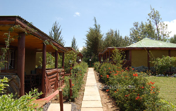 Mt.kenya-royal-cottages-nanyuki-pavement
