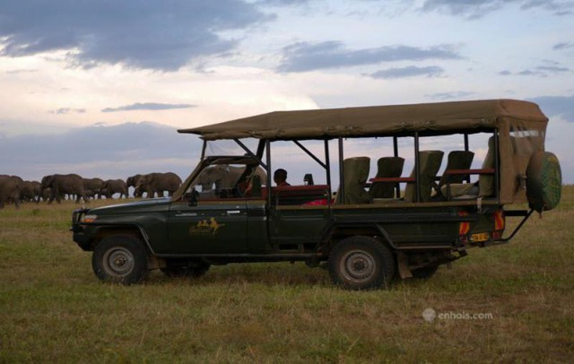 ilkeliani-camp-game-drive